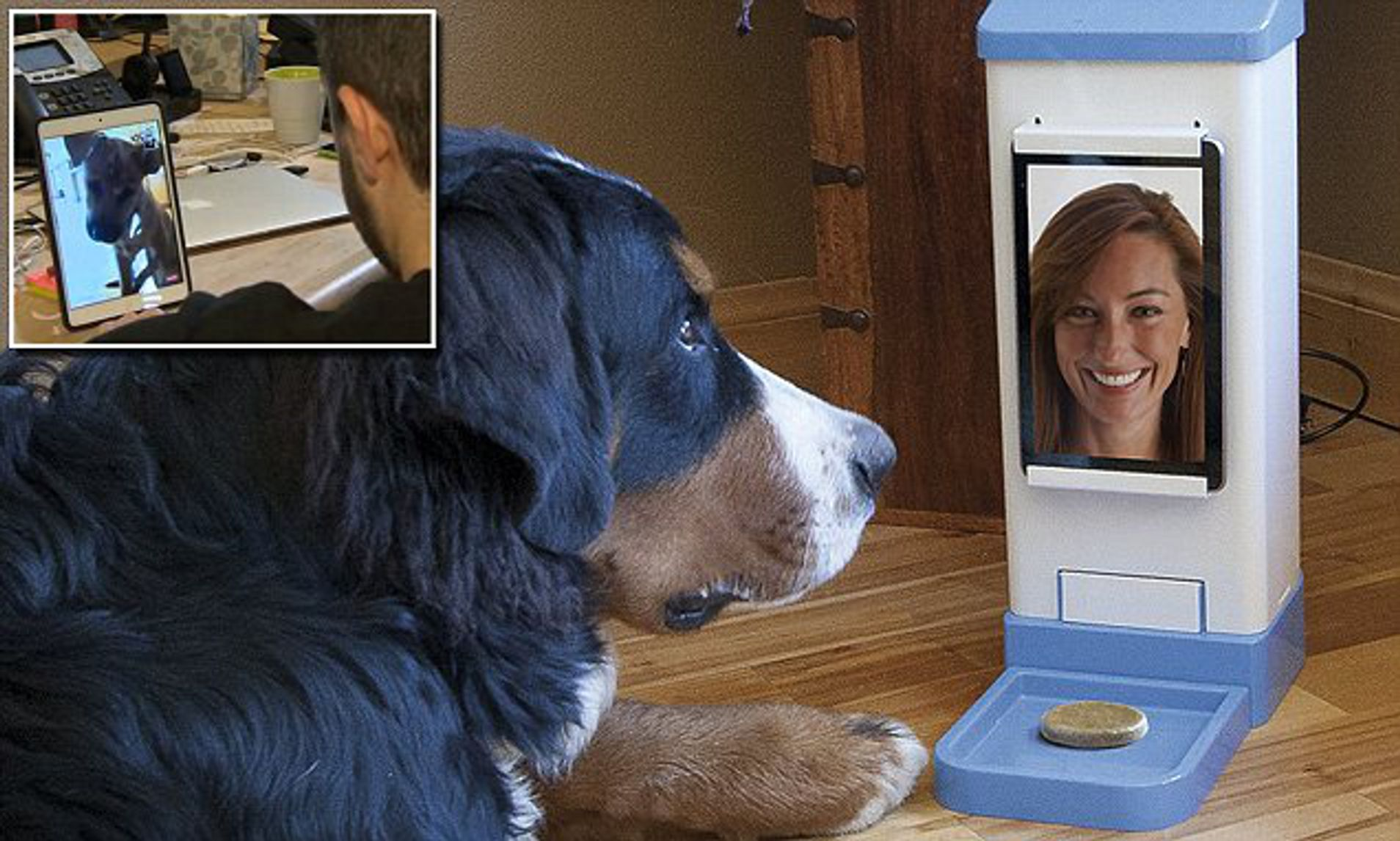 FaceTime with Your Pet While Away from Home with iCPooch